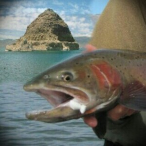 Cutthroat Pyramid Lake