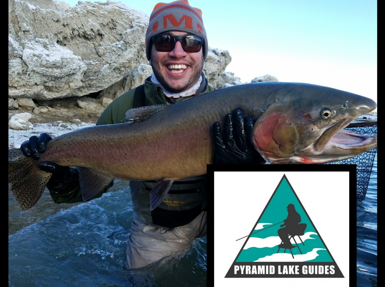 Pyramid Lake Guides